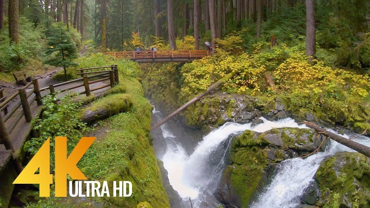 4K Virtual Hike - Amazing Nature Scenery with Soothing Music